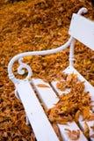 秋天长凳白色 免版税库存照片