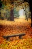秋天长凳 库存图片