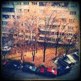 秋天阳光在城市 免版税库存图片