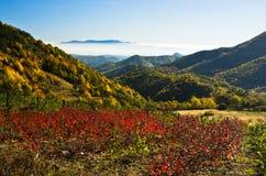秋天雾滚动在Zeljin山之间五颜六色的小山  库存照片