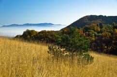 秋天雾滚动在Zeljin山之间小山  库存照片
