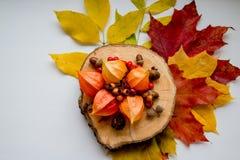 秋天静物画、酸浆和秋天装饰 辅助部件,秋天,婚姻的设备概念 红色顶视图  免版税库存图片
