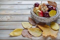 秋天静物画用各种各样的果子在柳条板材在 秋天槭树和其他叶子 免版税库存图片