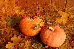 秋天静物画:反对干燥槭树背景的两个南瓜离开 图库摄影