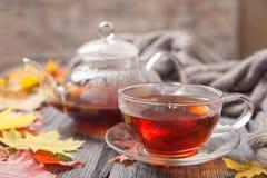 秋天静物画:在槭树的茶在一张木桌离开 库存照片