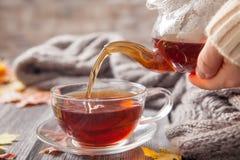 秋天静物画:在槭树的茶在一张木桌离开 库存图片