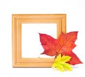 秋天静物画。 库存图片
