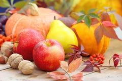 秋天静物画用水果、菜、莓果和坚果 库存照片