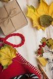 秋天静物画被编织的盖帽礼物叶子和干莓果 库存图片