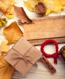 秋天静物画被编织的盖帽礼物叶子和干莓果 图库摄影