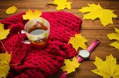 秋天静物画:茶、五颜六色的被编织的围巾和槭树 免版税图库摄影
