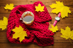 秋天静物画:茶、五颜六色的被编织的围巾和槭树 免版税库存照片