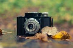 秋天音乐会,在autum背景的减速火箭的照相机 免版税库存照片