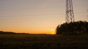 秋天领域风景:草甸和森林日落柔光的 庄严的横向 喀尔巴阡山脉,乌克兰,欧洲 影视素材