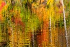 秋天颜色反射摘要  库存图片