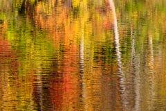 秋天颜色反射摘要  库存照片