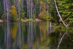秋天颜色和反射 免版税库存照片