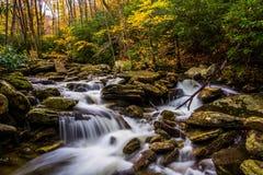 秋天颜色和小瀑布在Boone沿蓝色里奇同水准分叉 库存图片