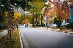 秋天颜色和房子沿Goldsborough街,在伊斯顿, Ma 免版税库存图片