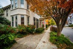 秋天颜色和房子街市伊斯顿的,马里兰 免版税库存图片