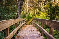 秋天颜色和桥梁在Tanawha沿被赶走的蓝色落后, 免版税库存图片