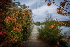 秋天颜色和码头在橡木小河着陆,在纽科姆,在St附近 库存图片