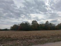 秋天颜色和被收获的麦地 免版税库存照片