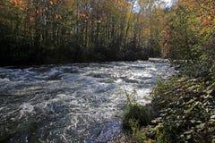 秋天颜色和跑沿蓝岭山行车通道的河 库存图片