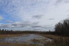 秋天颜色在一条河被反射在威斯康辛 库存图片