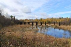 秋天颜色在一条河被反射在威斯康辛 免版税库存照片