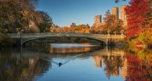 秋天颜色在中央公园 城市纽约 库存照片