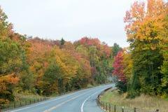 秋天颜色在北美洲 图库摄影