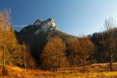 秋天颜色在国家公园Mala Fatra 免版税库存图片