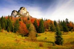 秋天颜色在国家公园Mala Fatra 库存照片