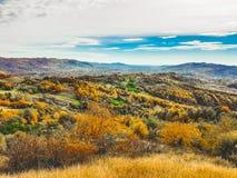 秋天颜色在天空下 库存照片