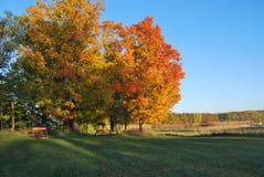 秋天颜色在威斯康辛 免版税库存图片