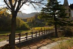 秋天颜色在意大利阿尔卑斯,瓦莱达奥斯塔 免版税库存照片