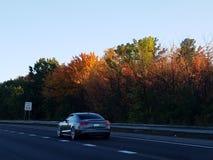 秋天颜色在新罕布什尔-新英格兰 免版税库存照片