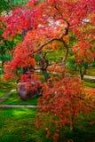 秋天颜色在日本 库存照片