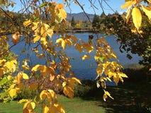 秋天颜色在普莱西德湖城,纽约 图库摄影