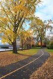秋天颜色在渥太华 免版税库存图片
