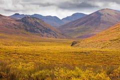 秋天颜色墓碑领土公园育空加拿大 库存照片