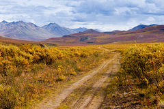 秋天颜色墓碑领土公园育空加拿大 库存图片