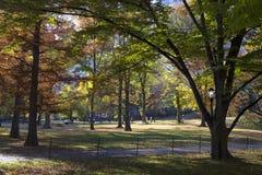 秋天颜色的中央公园纽约 免版税库存图片
