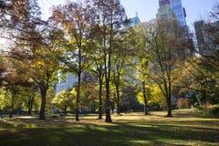 秋天颜色的中央公园纽约 免版税图库摄影