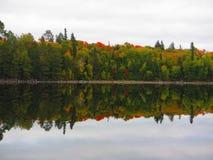 秋天颜色的反射 免版税库存照片