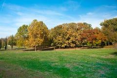 秋天颜色的城市公园诺维萨德 免版税库存照片