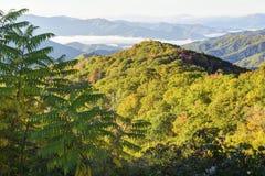 秋天颜色的大烟山 图库摄影