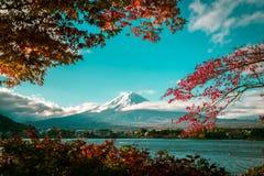 秋天颜色的富士山,日本 免版税图库摄影