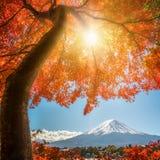 秋天颜色的富士山,日本 图库摄影